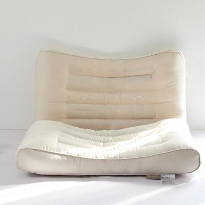 森绵决明子枕